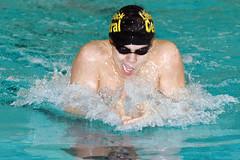 Sideway swimmer