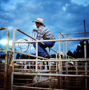 rodeo :: marshall, virginia