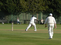 cricket, test cricket, sports, team sport, bat-and-ball games, ball game, athlete,