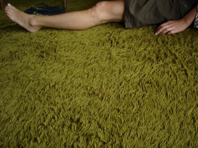 Green Shag Carpet 2004 Flickr Photo Sharing