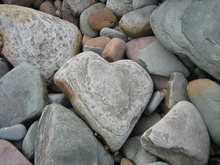 Heart-shaped stone found in the Royal National Park near Sydney Australia