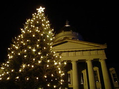 State House and Xmas tree
