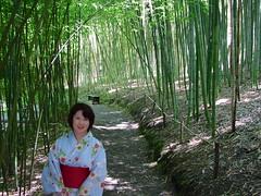 Akemi among a grove of bamboo