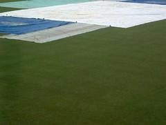 floor(0.0), field(0.0), soil(0.0), baseball field(0.0), golf course(0.0), flooring(0.0), sport venue(1.0), grass(1.0), plain(1.0), artificial turf(1.0), green(1.0), lawn(1.0), grassland(1.0),