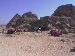 Egypt(026)