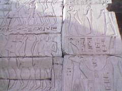 Egypt(173)