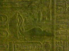 Egypt(125)