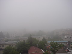 drizzle(0.0), hill(0.0), fog(1.0), rain(1.0), haze(1.0), morning(1.0), mist(1.0),