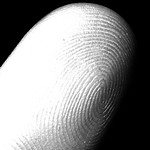 Closeup of finger with fingerprint visible