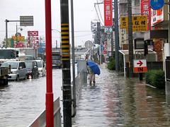 natural disaster, flood,