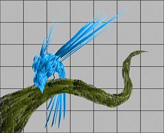 ornithi vectoris