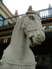 Closeup of the horse