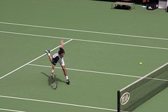 sport venue, tennis court, tennis, sports, tennis player, ball game, racquet sport,