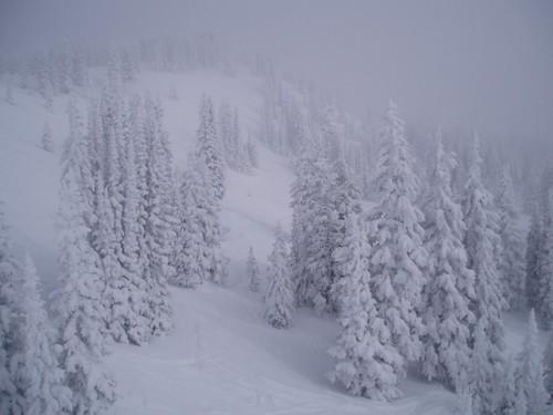 Blizzard - Steamboat Springs, Colorado