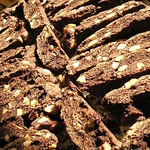 Double Chocolate Almond Biscotti (3)
