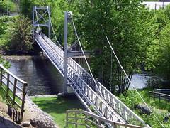 truss bridge(0.0), rope bridge(0.0), arch bridge(0.0), suspension bridge(1.0), canopy walkway(1.0), waterway(1.0), bridge(1.0), cable-stayed bridge(1.0),
