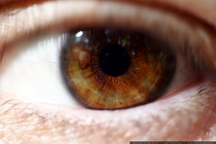 rachel's eyeball    mg 1379