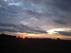 East Texas Sunrise VIII