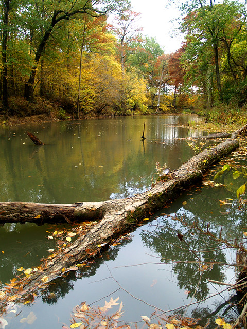 Little Maumelle River