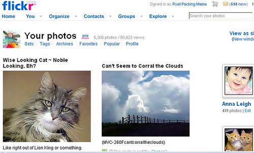 Screen Shot Showing Over 80,000 Photostream Views