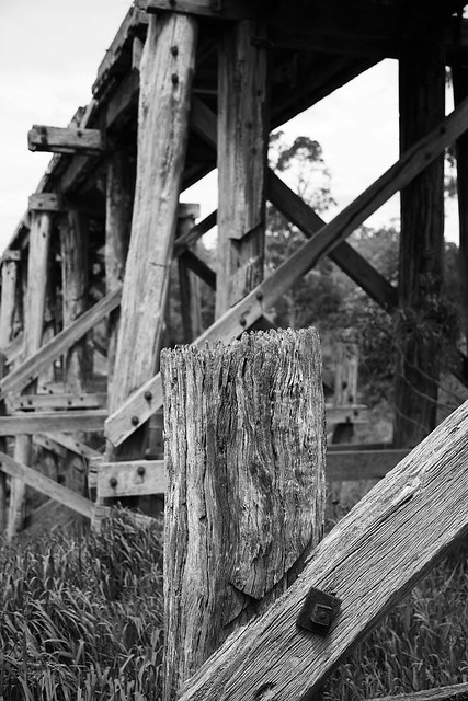 Old trestle bridge, Timboon