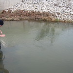 Justin wades out to find the stream sensor