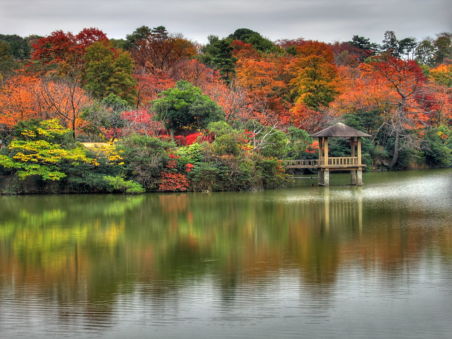 Photo:Autumn reflections (HDR) By EugeniusD80