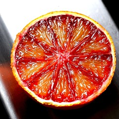 clementine(0.0), plant(0.0), produce(0.0), grapefruit(1.0), citrus(1.0), orange(1.0), blood orange(1.0), fruit(1.0), food(1.0), tangelo(1.0), juice(1.0),