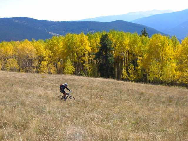 vail back bowls in the fall