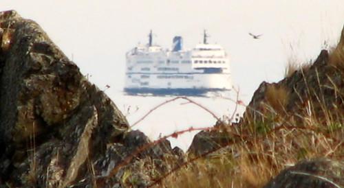 A ferry approaching a port