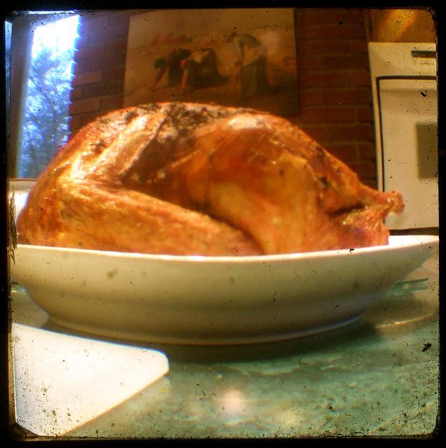 turkey from Flickr via Wylio