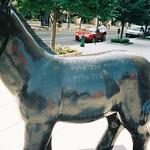 Washington, DC: Donkeys: Black & Braille