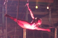 event, performing arts, aerialist, entertainment, dance, performance, acrobatics, circus, performance art,