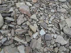 asphalt(0.0), boulder(0.0), stone wall(0.0), wall(0.0), soil(0.0), flagstone(0.0), cobblestone(0.0), stream bed(0.0), road surface(0.0), flooring(0.0), rubble(1.0), geology(1.0), bedrock(1.0), rock(1.0), gravel(1.0),