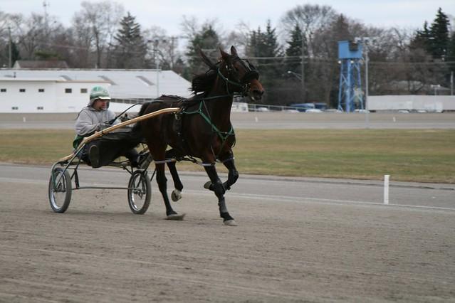 harness racing movies