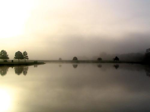 park fog sunrise dallas texas albaluminis foggy 2006 whatknot fogography ci33 top20texas bestoftexas
