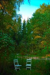 autumn, sweden