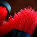 red conversation by hailun