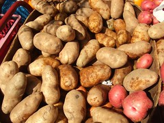 plant(0.0), vegetable(1.0), potato(1.0), produce(1.0), food(1.0), root vegetable(1.0), tuber(1.0),