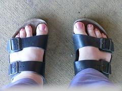hand(0.0), outdoor shoe(0.0), arm(0.0), purple(0.0), shoe(0.0), human body(0.0), blue(0.0), footwear(1.0), finger(1.0), sandal(1.0), limb(1.0), leg(1.0), foot(1.0), nail(1.0), pink(1.0), toe(1.0),