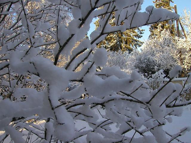 Una nevada fresca