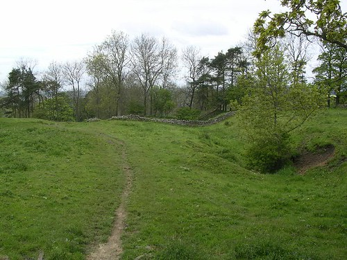 Dixon's Plantation with the ditch to the right
