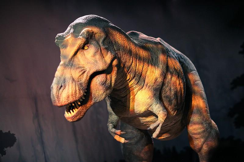 T-Rex Tyrannosaurus