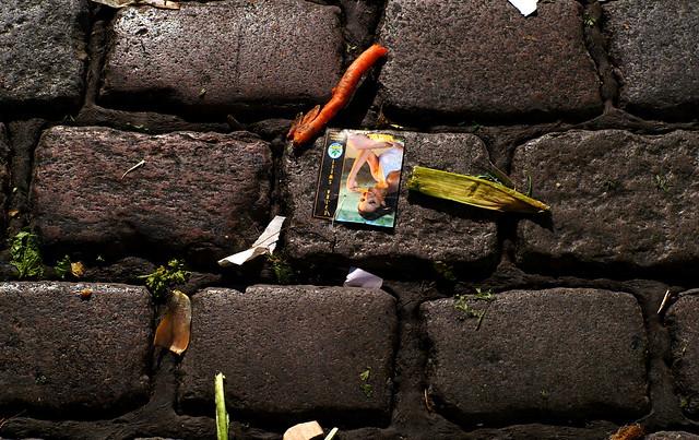 Image Result For Home Garden Hamburga