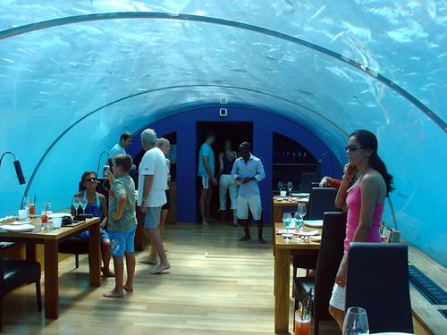 el restaurante bajo el mar maldivas taringa
