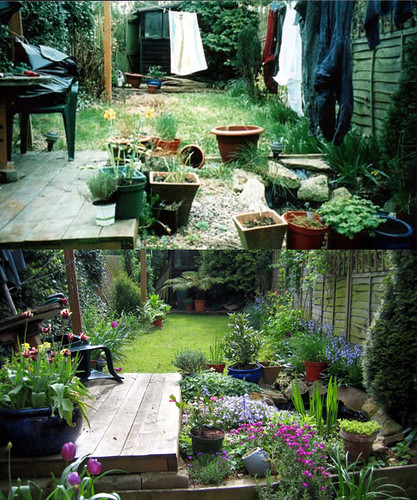 my garden before and after flickr photo sharing