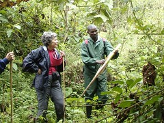 woodland(0.0), adventure(0.0), walking(0.0), plantation(0.0), shrub(1.0), tree(1.0), forest(1.0), natural environment(1.0), jungle(1.0), forester(1.0),