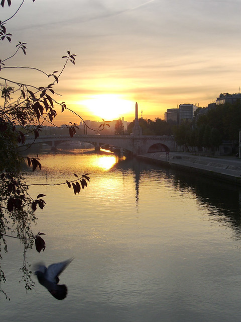 Dawn on Seine
