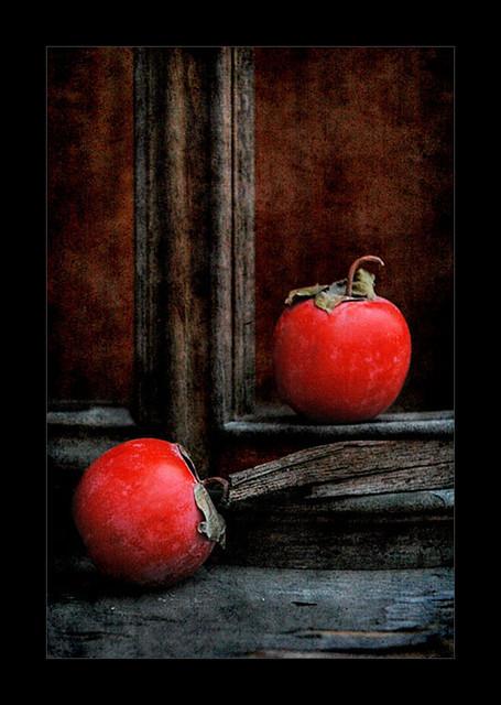 柿叶半红犹未归图片