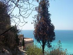 2006-08-21 Niza y el mediterráneo